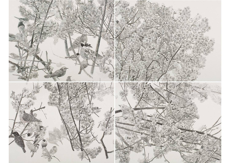 관매산금觀梅山禽, 55 x 70 cm x 4폭, 비단에 수묵채색, 2018@How to see a plum blossom and wild birds, 55 x 70cm x 4pcs,  ink and mineral pigments on silk, 2018