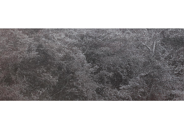 유봉상, kjw20100924, 80X200cm, Nail&acylic on wood,2010 @Yoo Bongsang, kjw20100924, 80X200cm, Nail&acylic on wood, 2010